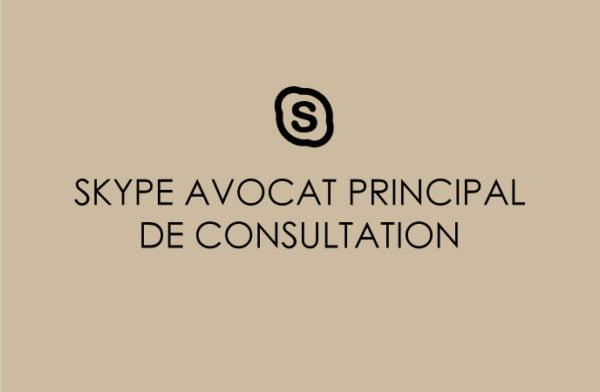 CONSULTATION SKYPE  AVOCAT PRINCIPAL