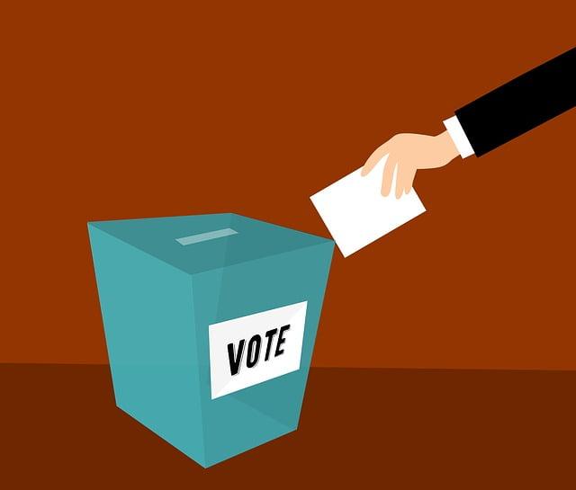 un hombre un voto